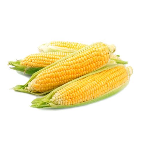 Кукуруза 1шт.