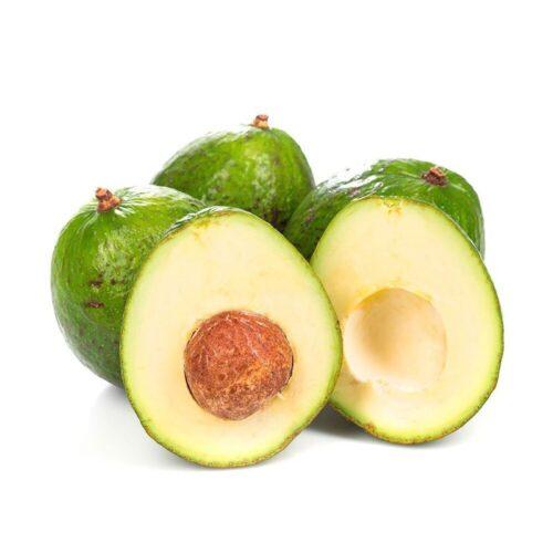 Авокадо гигант 1шт.